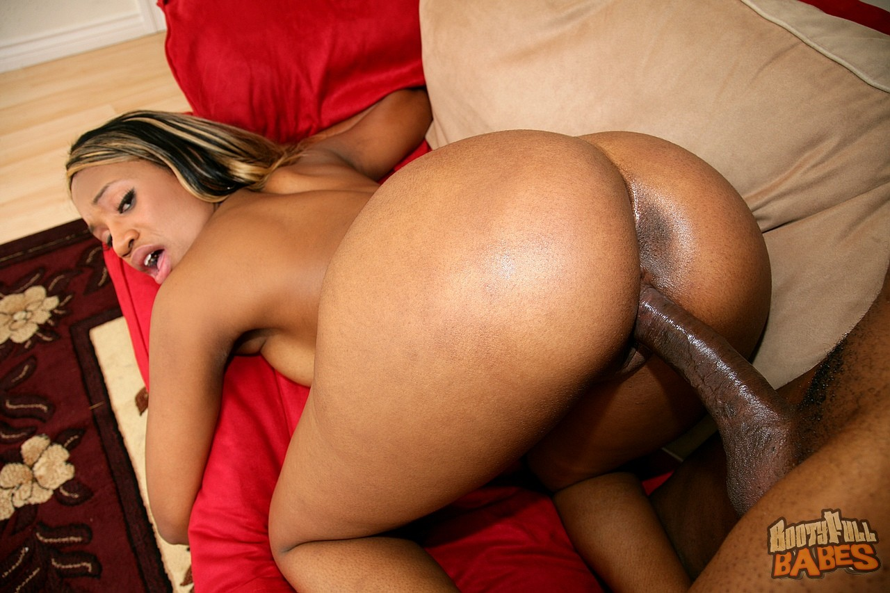 Big ebony butt sex